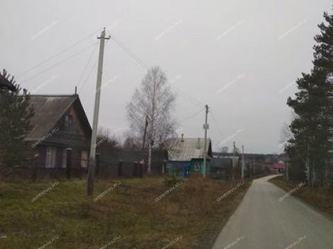 dom-derevnya-buzuyki-gorodskoy-okrug-bor фото