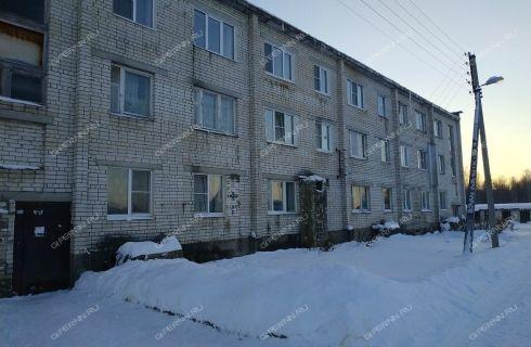 2-komnatnaya-derevnya-krasnaya-sloboda-gorodskoy-okrug-bor фото