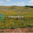земельный участок под коммерческое использование в Дальнеконстантиновском районе Нижегородской области