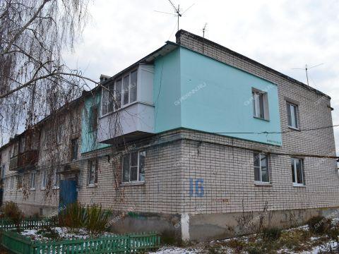 2-komnatnaya-selo-shapkino-bogorodskiy-rayon фото