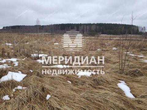 dom-derevnya-gornyy-borok-kstovskiy-rayon фото