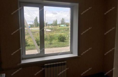 1-komnatnaya-selo-margusha-dalnekonstantinovskiy-rayon фото